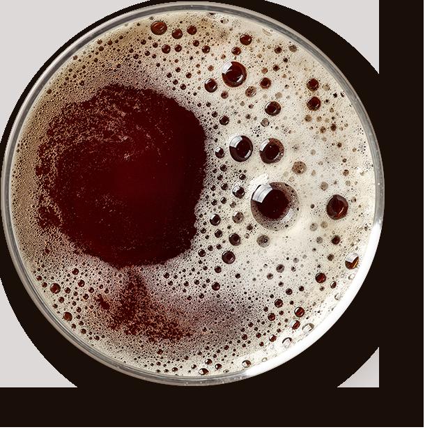 http://pilsnergubbarna.se/wp-content/uploads/2017/05/beer_transparent.png